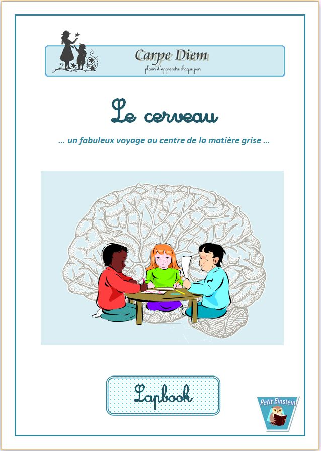 Le lapbook du cerveau - Ce lapbook est le complément du cours d'Ellen McHenry sur le cerveau. www.carpediem.asso.fr