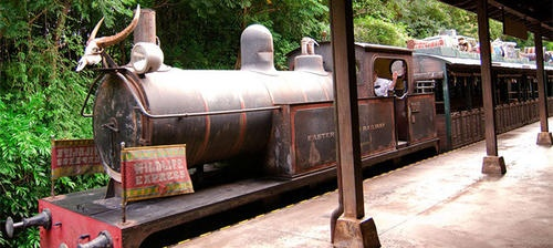 The Wildlife Express Train is a 1.2-mile train that transports Animal Kingdom guests from the Harambe, Africa section of the park to the Rafiki's Planet Watch areas.