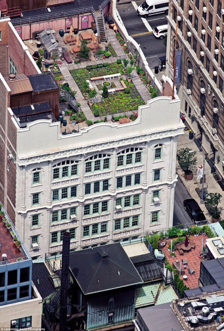 13 best Rooftop Gardens images on Pinterest   Rooftop gardens ...