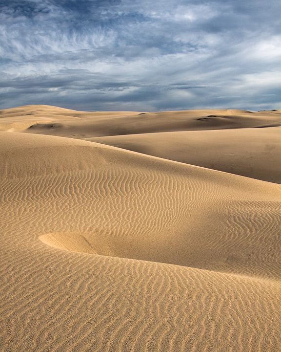 Sand dunes in the Umpqua National Forest, North of Coos Bay, OR. -Aaron Ellingsen