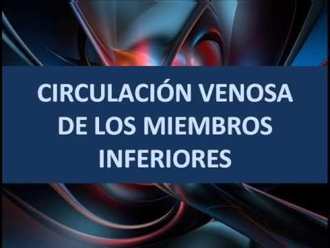 Circulación venosa de los miembros inferiores
