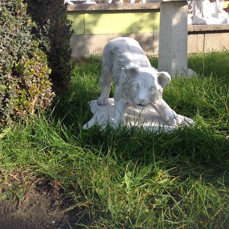 Kis kedvencek kőből. Magyarországon a legnagyobb szoborkereskedés melyben a kutya és macska szobrok kicsitől a nagyig mindenfajta megtalálható. Halásztelki telephelyünkre érdemes ellátogatni, ha szereti, a szobrokat ígérem lesz mit nézegetni.  Messze van tőlünk? Sebaj, nagyon jó webáruházzal rendelkezünk.