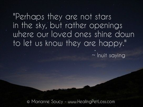 perhaps they are not stars in the sky but rather openings