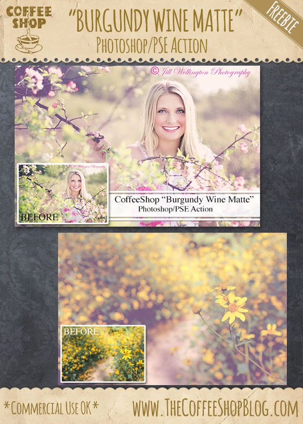 45 FREE Photoshop actions including: Burgundy Wine Matte Photoshop Action