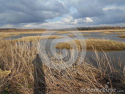 Orenburg region, Novosergiyevskiy district, Pokrovka village. The eighth of may, 2017