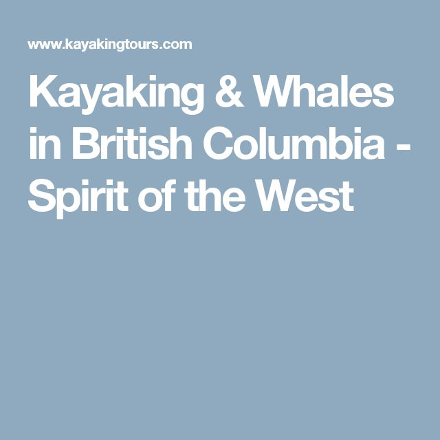 Kayaking & Whales in British Columbia - Spirit of the West