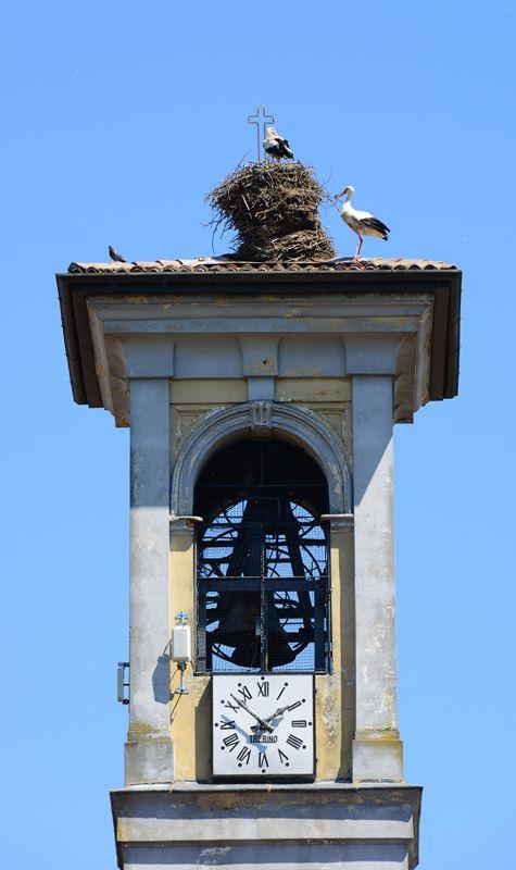 SantAlessio con Vialone, Pavia Lombardia Italy