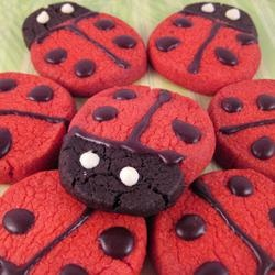 ... recipes on Pinterest | Sugar cookies, Chocolate cookies and Pinwheels