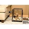 http://www.dog.com/item/midwest-icrate-folding-dogcrate/110340/