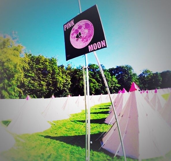 Fly me to the Pink Moon and let me dance among the stars! #PinkMoonCamping #festivals http://www.pinkmooncamping.co.uk/