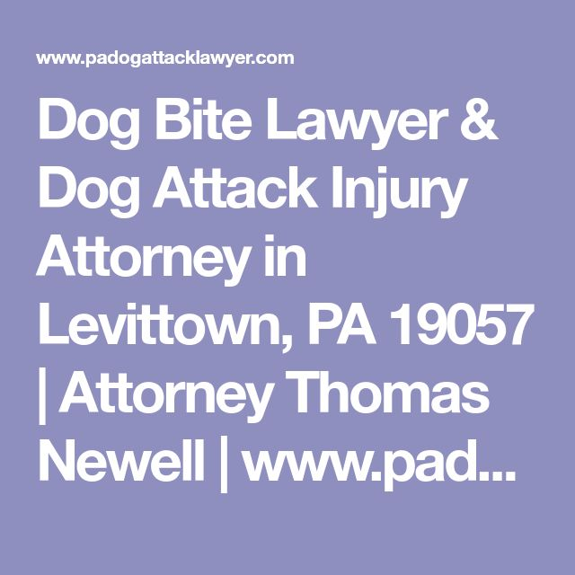 Best 25+ Dog attack ideas on Pinterest Dog attack videos, Videos - raytheon security officer sample resume