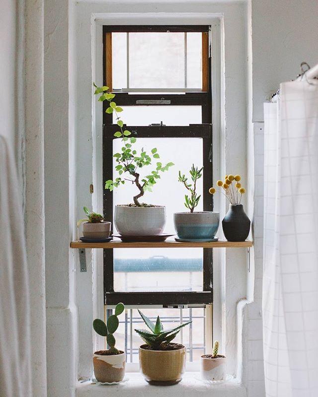 Awkward Kitchen Layout Solutions: Best 25+ Open Window Ideas On Pinterest