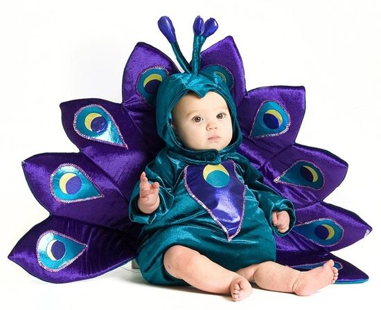 Costume Supplies: Baby Peacock Infant/Toddler Costume