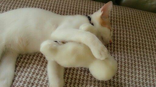 hug hug...
