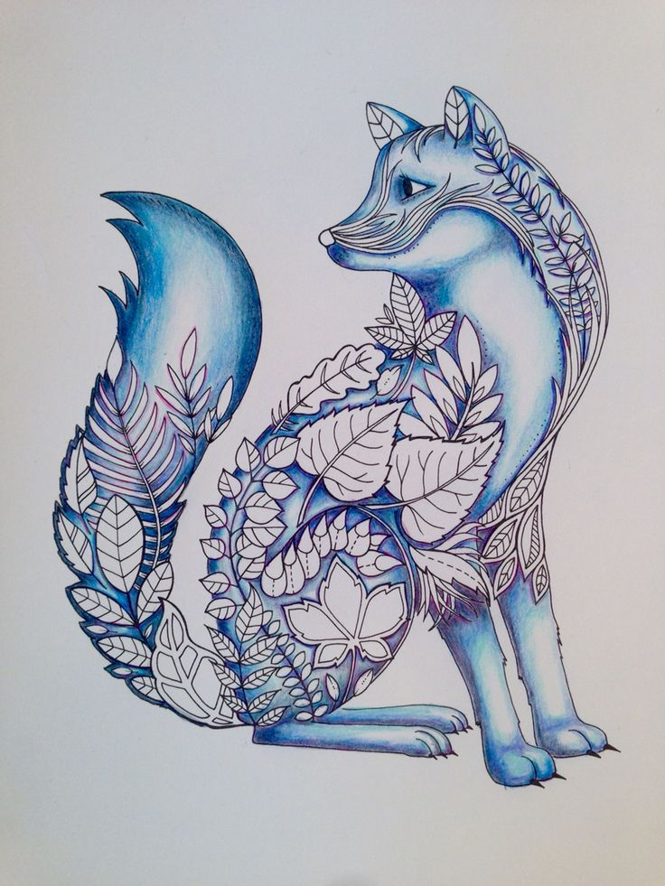 More Coloring On The Fox Enchanted Forest Adult Coloring