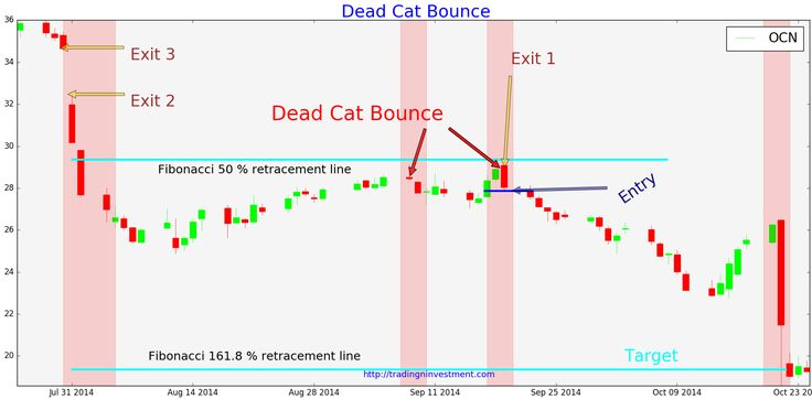 Dead Cat Bounce Trade setup