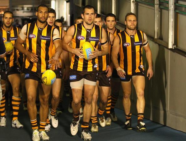 Luke Hodge Photo - AFL Second Semi Final - Hawthorn v Sydney