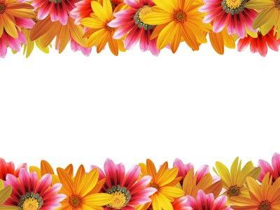 Daisy Border Background Wallpaper Flower frame, Flower