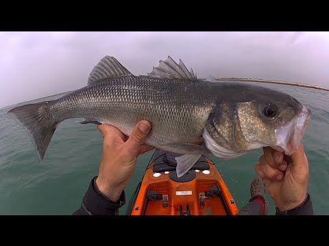 Pêche du Bar en Kayak aux leurres mai 2016 Normandie HD 1080P - YouTube
