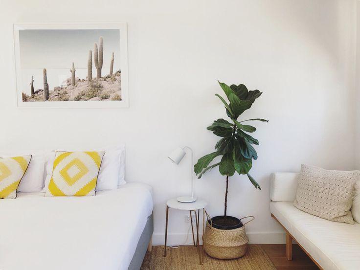 いいね!759件、コメント15件 ― Rebecca ♡さん(@rvk_loves)のInstagramアカウント: 「🌴🌿🌵 waking up here this morning. The architects for @bask_and_stow were inspired by Palm Springs.…」