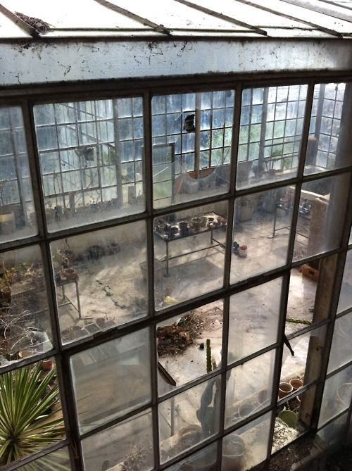 Lets think of this as a space for a studio not a greenhouse! #studio