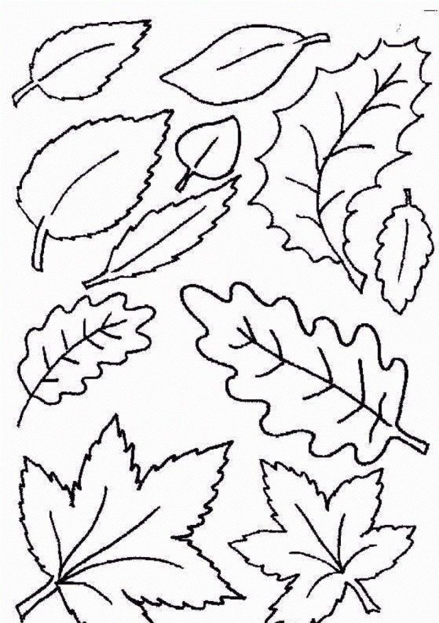 21 Awesome Image Of Fall Leaves Coloring Pages Entitlementtrap Com Leaf Coloring Page Fall Leaves Coloring Pages Fall Coloring Pages