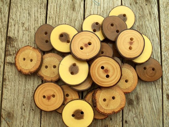 NEW  24 Buttons  4 Kind Tree Branch Buttons  1 2/5 inches