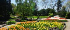 Royal Botanical Garden in Burlington Ontario