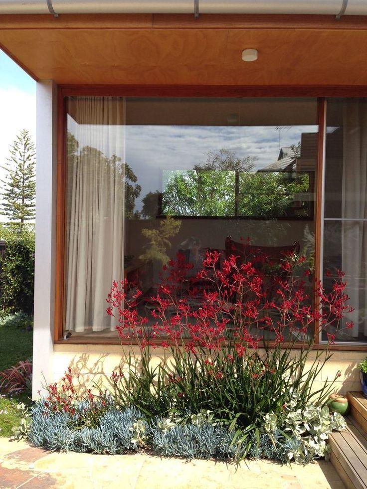 3 Efficient Hacks Front Yard Landscaping Budget Desert Front Yard Garden Front Yard Landscaping Design