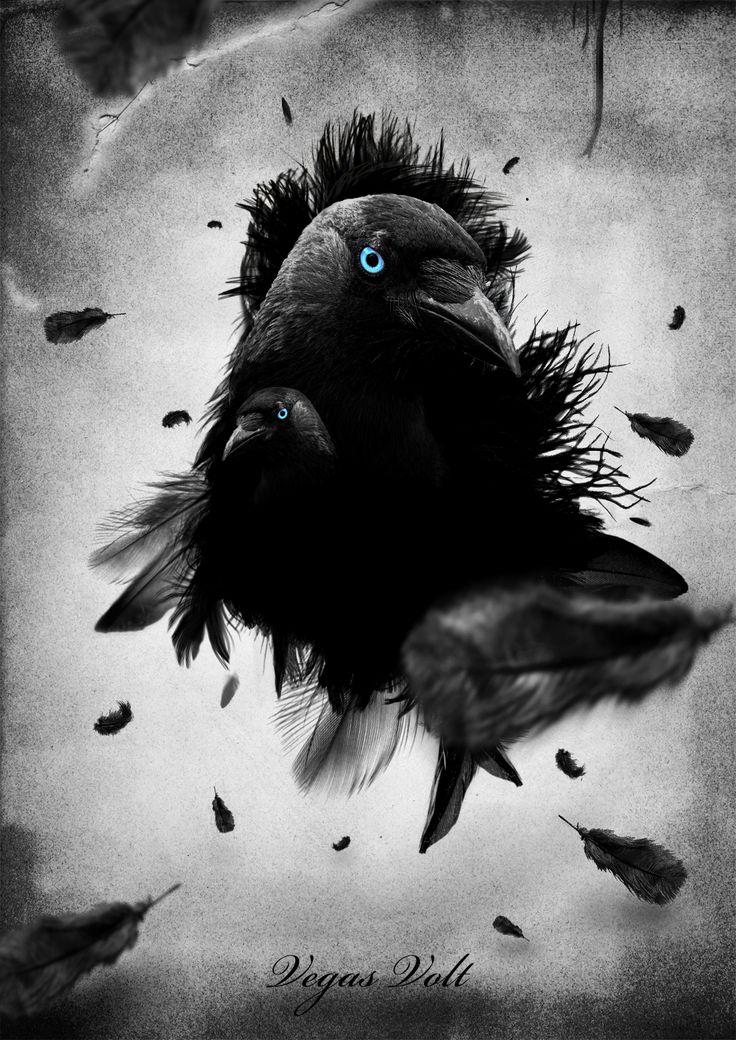 Teremtés, változás, spirituális erő, misztikum, mágia, jóslás – ezekkel hozható összefüggésbe. Ezen felül: a kozmikus törvénnyel – a karmával – és a magasabb rendeltetéssel áll kapcsolatban. (A Szaturnusz, a karma bolygójának madara a holló.)/ Szimbólumok/Állatszimbólumok: Varjú ~ állat szimbolika, állat szimbólumok, ezotéria, fényörvény, hírek, jelképek, pókok, rejtélyek, spiritualitás, szimbólumok, titkok,