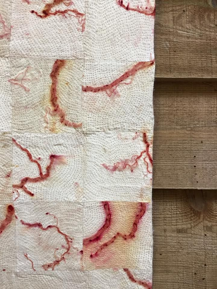 Caroline Bell's gorgeous stitching and madder root prints at From the Earth…
