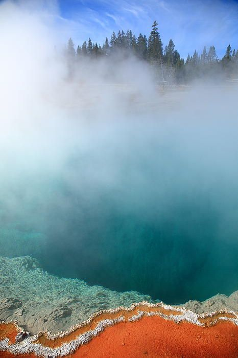 Yellowstone National Park geyser. Steaming geothermal hot springs on the shore of Yellowstone Lake. Classic Yellowstone, this photograph was taken in the West Thumb Geyser Basin.
