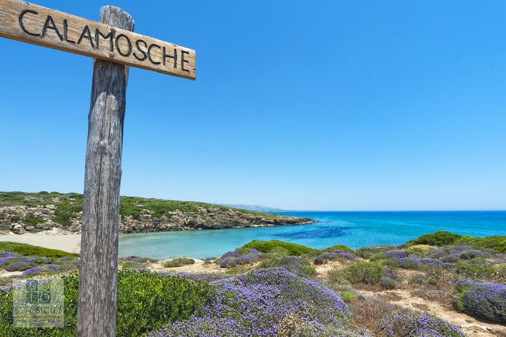 Visit Calamosche in the Vendicari Nature Reserve for a perfect day at the beach. #Sicily #beach #sun