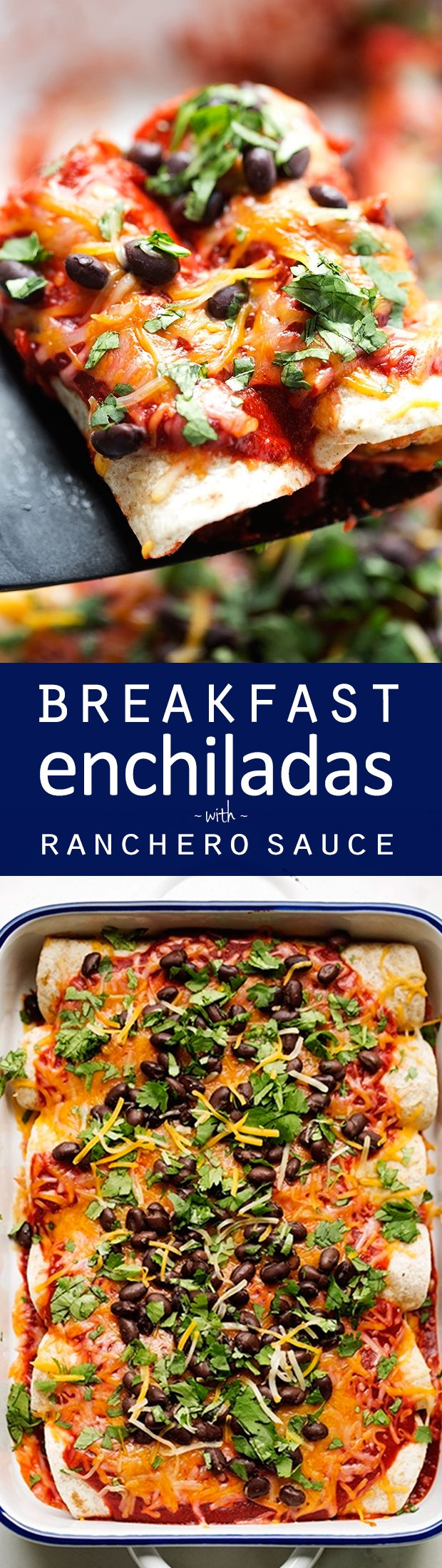 Breakfast enchiladas loaded with shredded potatoes, scrambled eggs, and black beans drizzled with my homemade ranchero sauce and shredded cheese -- comfort food to the max!