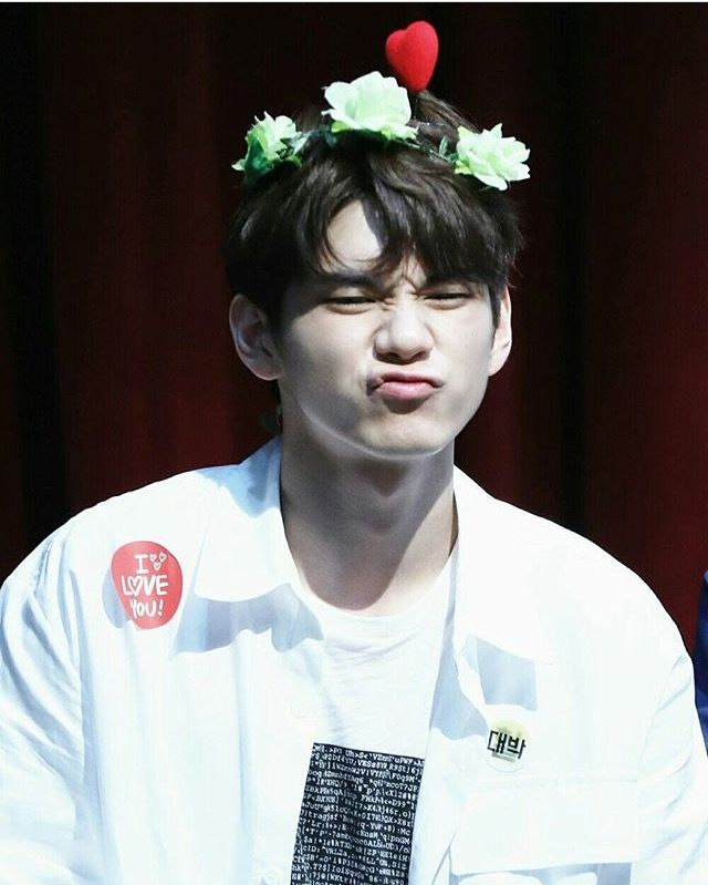 Ong Seongwu Wanna One