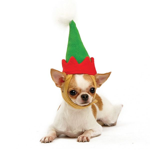 You'll bring lots of holiday cheer into your home when your dog wears this Elf Hat. Green fleece with pointed red fleece band and snowy ball on top. Well designed straps allow for the ears to pull thr