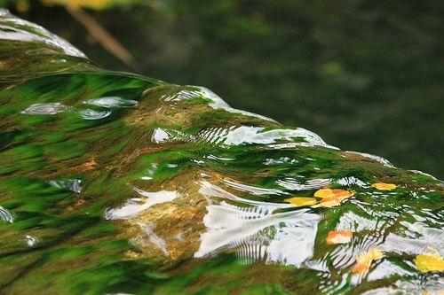 Texturas del Agua