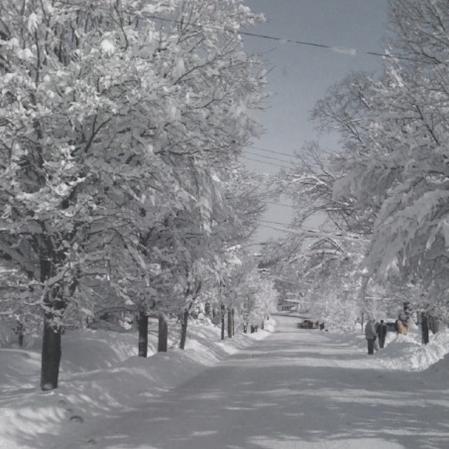 Pittsburgh, PA. SnowstormPittsburgh 'Yinz, Pittsburgh Snowstorm, Burgh Things, Pittsburgh 3, Pittsburgh Pa, Pennsylvania Usa, Pa Snowstorm, Things Pittsburgh, Pittsburgh Winter
