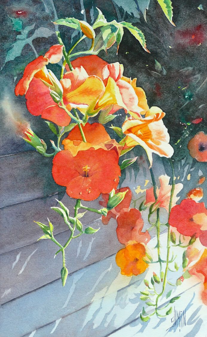 Bignone Joel Simon Kreslene Kvetiny Drawing Flowers V Roce