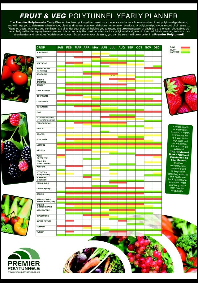 Fruit Amp Veg Polytunnel Yearly Planner Download And