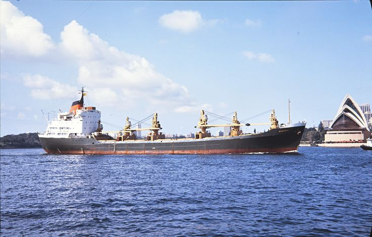 union steamship company ngahere - Google Search