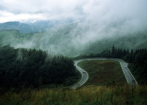 winding roads...foggy days... ♥