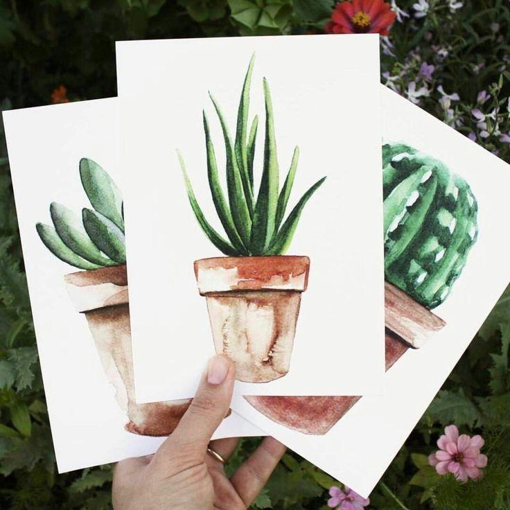 Pink Cactus als Premium Poster von Christoph Abatz…
