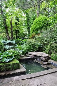 Love how the Pond is focal point of a lush garden