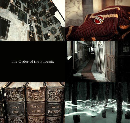 Harry Potter aesthetics: Yr 5