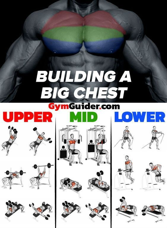 Choosing the Right Workout Routine – The Best Workouts Programs