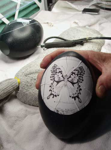 When carving an Emu egg, It is also important to protect the inside of the shells, as the white layer is only 0.005- to 0.006-inch thick. For this, you could use a mixture of 50 percent Elmer's glue and 50 percent water. Coat the inside of the egg several times with this mixture prior to working on the egg. If you consider carving chicken or goose eggs, in which case you might have larger empty spaces or fine filigree work, this is an especially important part of the process.