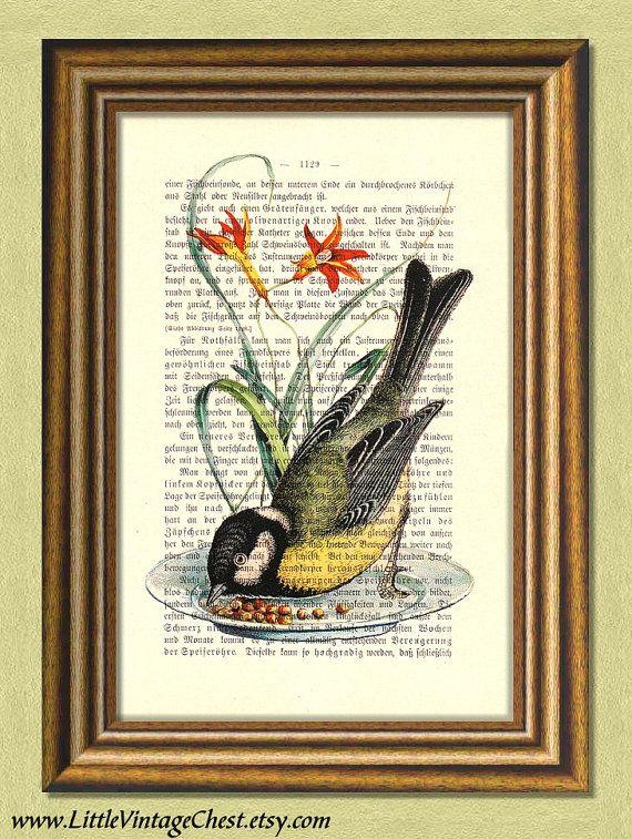 LITTLE FINCH  Bird  Dictionary art print by littlevintagechest, $7.99
