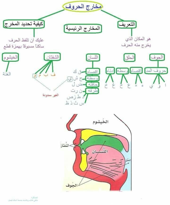 مخارج الحروف Learn Quran How To Read Quran Tajweed Quran