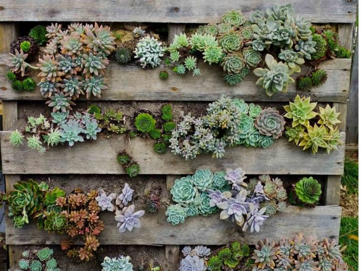 Jardinière en palettes